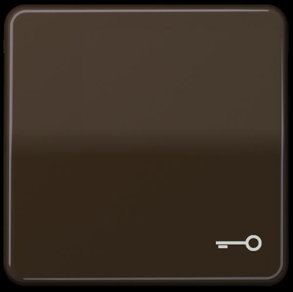 """JUNG CD590TBR Wippe mit Symbol """"Schlüssel"""" Braun"""