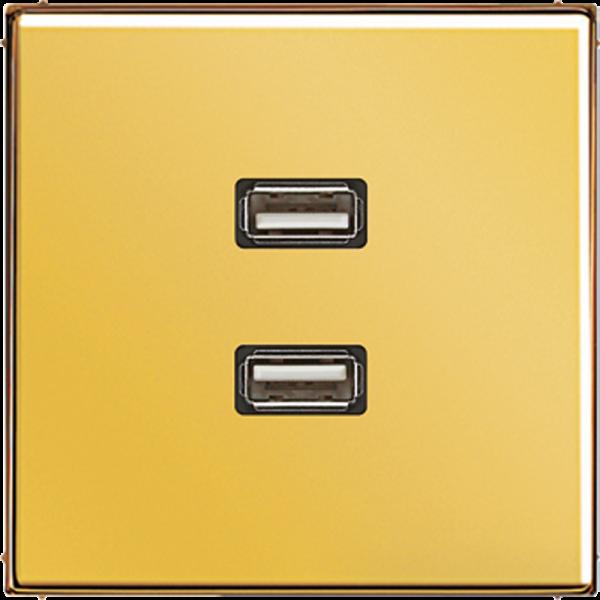 JUNG MAGO1153 2xUSB2.0 Goldfarben
