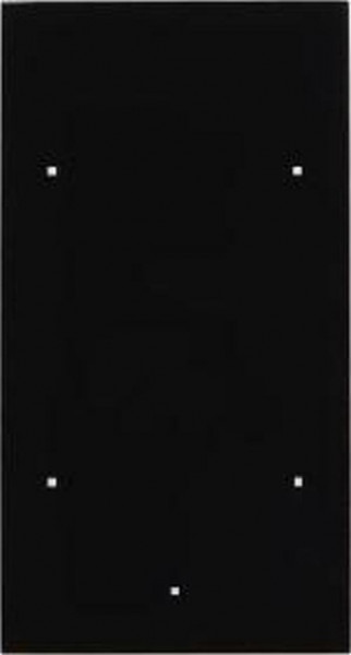Berker 169205 Glas-Sensor 2Fach TS Sensor Glas, Schwarz