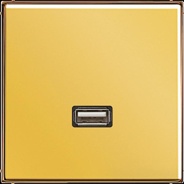 JUNG MAGO1122 USB2.0 Goldfarben