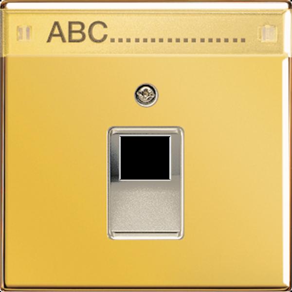 JUNG GO2969-1NAUA Abdeckung UAE/IAE mit Schriftfeld Goldfarben