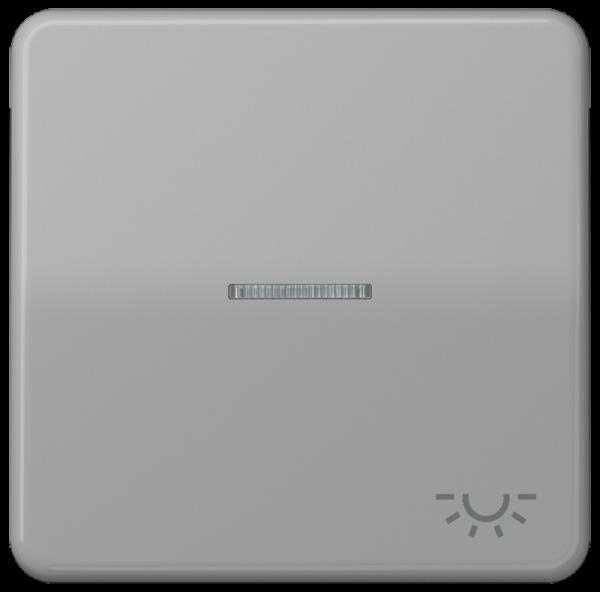 """JUNG CD590KO5LGR Kontroll-Wippe mit Symbol """"Licht"""" Grau"""