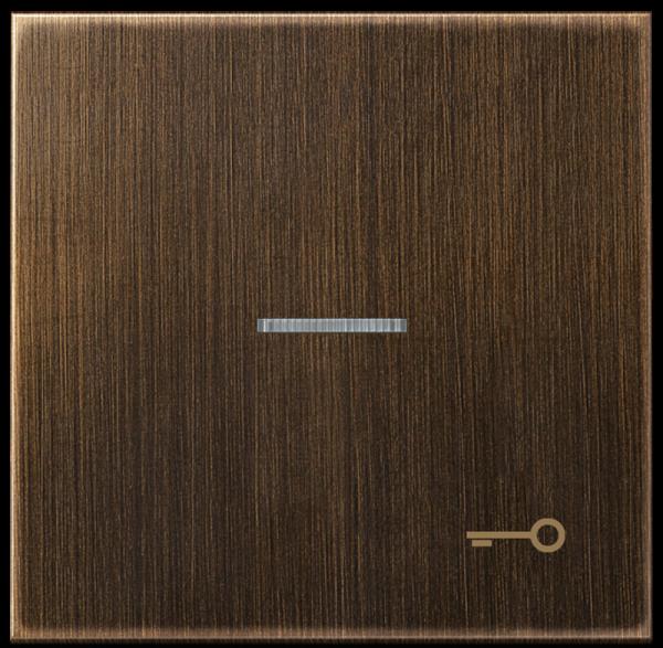 """JUNG ME2990KO5TAT Kontroll-Wippe mit Symbol """"Tür"""" Messing- Antik"""