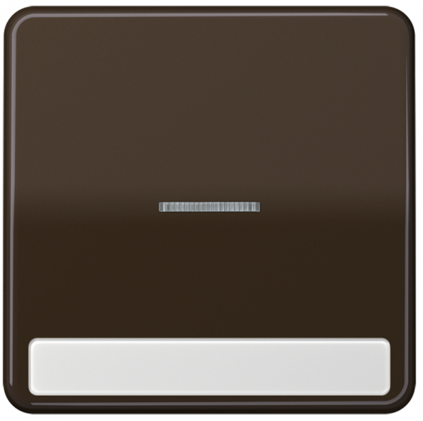 JUNG CD590NAKO5BR Kontroll-Wippe mit Schriftfeld Braun