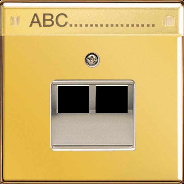 JUNG GO2969-2NAUA Abdeckung UAE/IAE 2-Fach mit Schriftfeld Goldfarben