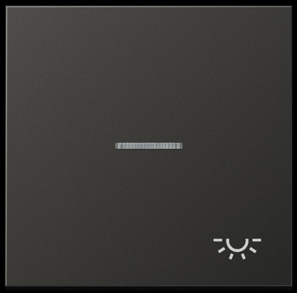 "JUNG AL2990KO5LAN Kontroll-Wippe mit Symbol ""Licht"" Anthrazit"