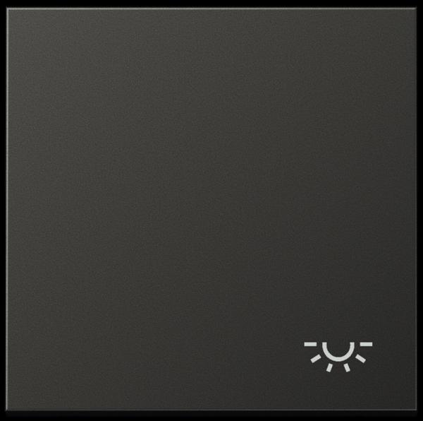 """JUNG AL2990LAN Wippe mit Symbol """"Licht"""" Anthrazit"""
