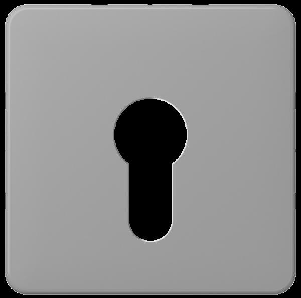 JUNG CD525GR Abdeckung für Schlüsselschalter ohne Demontageschutz Grau