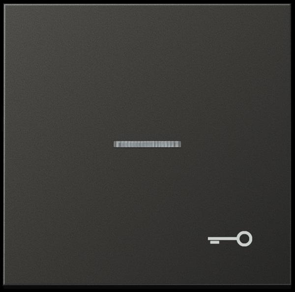 """JUNG AL2990KO5TAN Kontroll-Wippe mit Symbol """"Tür"""" Anthrazit"""