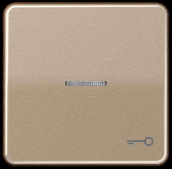"JUNG CD590KO5TGB Kontroll-Wippe mit Symbol ""Schlüssel"" Gold-Bronze"