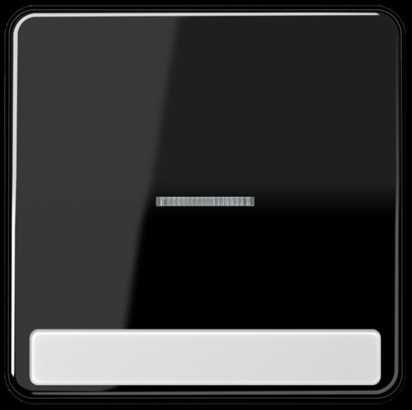 JUNG CD590NAKO5SW Kontroll-Wippe mit Schriftfeld Schwarz