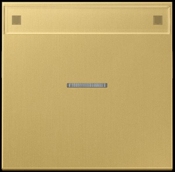 JUNG ME2990NAKO5C Kontroll-Wippe mit Schriftfeld Messing-Classic