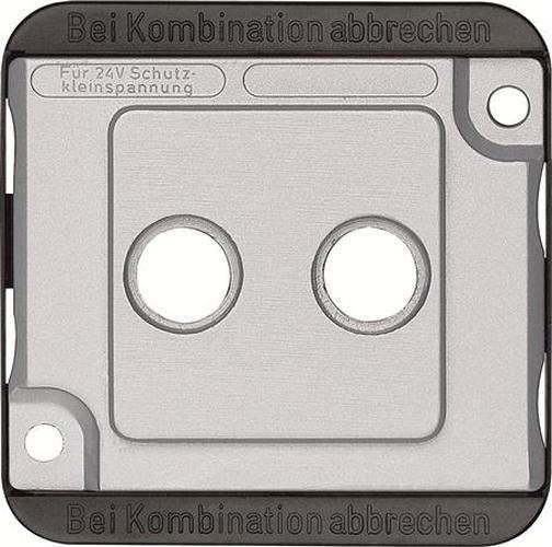 Merten 294660 Zentralplatte 2-Loch Mattsilber