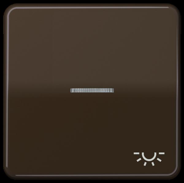 "JUNG CD590KO5LBR Kontroll-Wippe mit Symbol ""Licht"" Braun"