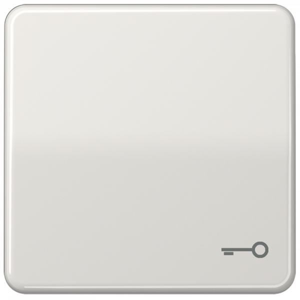 """JUNG CD590TLG Wippe mit Symbol """"Schlüssel"""" Lichtgrau"""