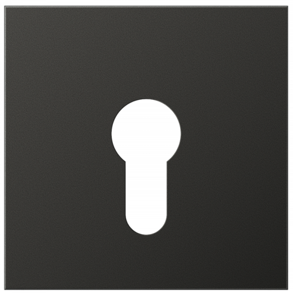 JUNG AL2925AN Abdeckung für Schlüsselschalter Anthrazit