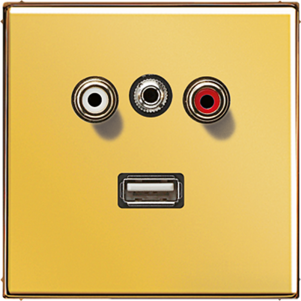 JUNG MAGO1092 Cinch Audio-Miniklinke 3,5 mm-USB2.0 Goldfarben