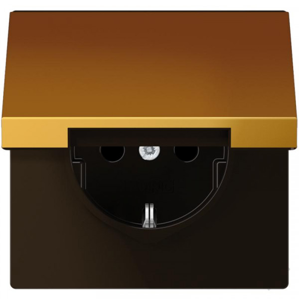JUNG GO1520KL Steckdosen-Einsatz mit Klappdeckel Goldfarben