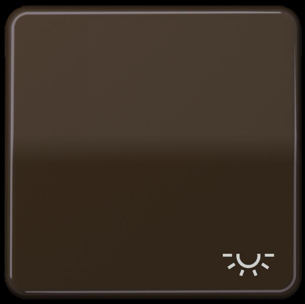 """JUNG CD590LBR Wippe mit Symbol """"Licht"""" Braun"""