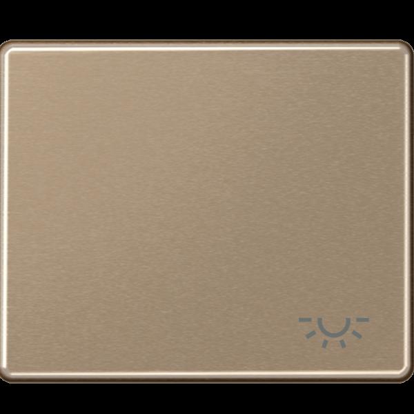 """JUNG SL590LGB Wippe mit Symbol """"Licht"""" Gold-Bronze"""