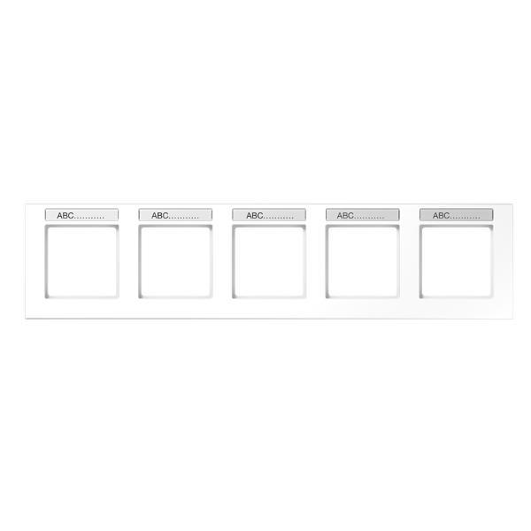 JUNG AC5850BFNAWW Rahmen mit Schriftfeld 5-Fach Alpinweiß