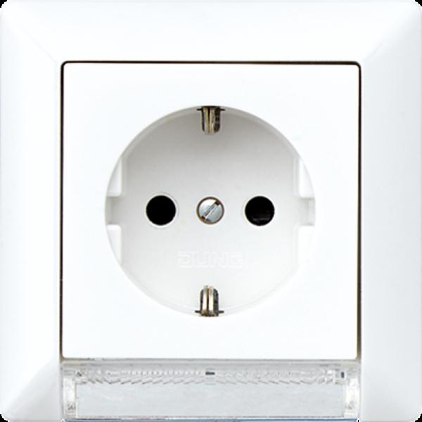 JUNG AS520-OBFWWLEDW Steckdosen-Einsatz mit LED-Orientierungslicht Alpinweiß