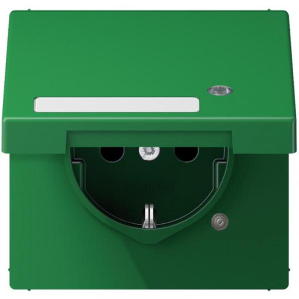 JUNG LS1520BFKLKOGN Steckdosen-Einsatz mit Funktionsanzeige und Klappdeckel Grün