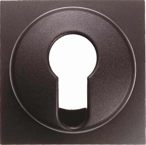Berker 15071606 Zentralstück für Schlüsselschalter/-taster B.3/B.7 Anthrazit, Matt