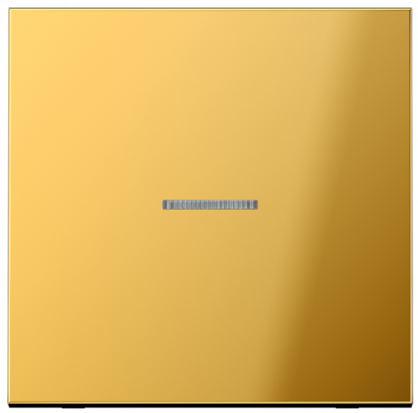 JUNG GO2990KO5 Kontroll-Wippe Goldfarben