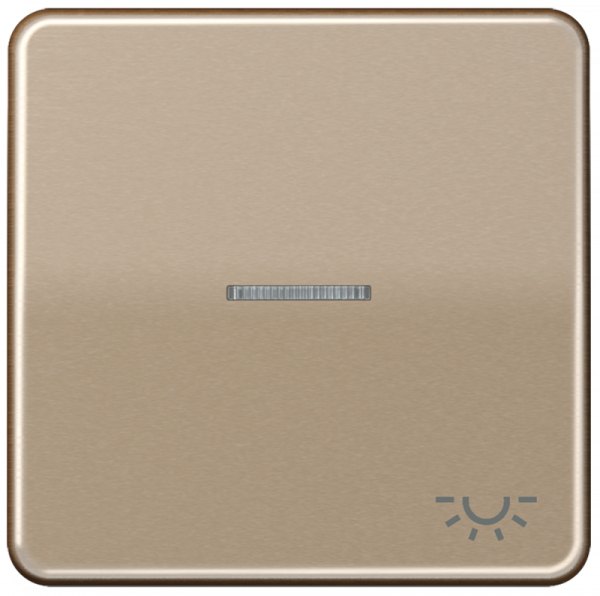 """JUNG CD590KO5LGB Kontroll-Wippe mit Symbol """"Licht"""" Gold-Bronze"""