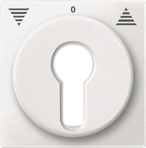 Merten 319319 Zentralplatte Schlüsselschalter Polarweiß