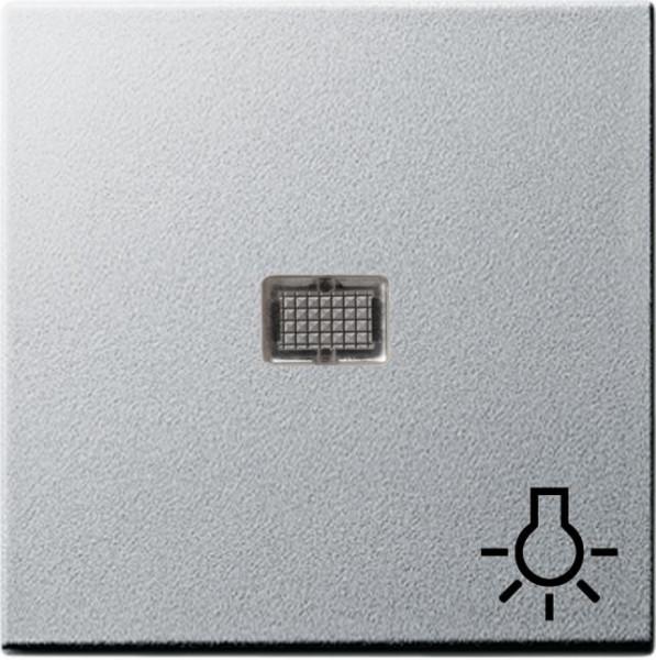 """GIRA 063026 Wippe mit großem Kontrollfenster und Symbol """"Licht""""Farbe-Alu"""