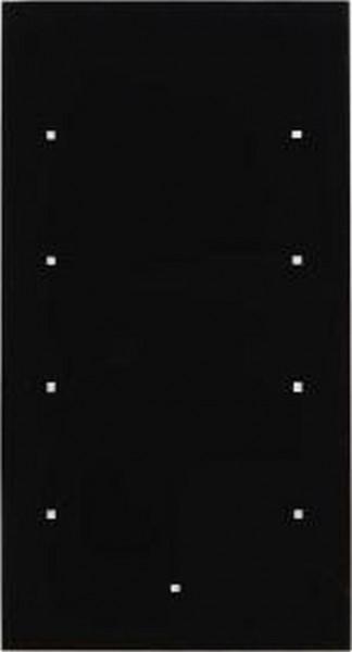 Berker 169405 Glas-Sensor 4Fach TS Sensor Glas, Schwarz