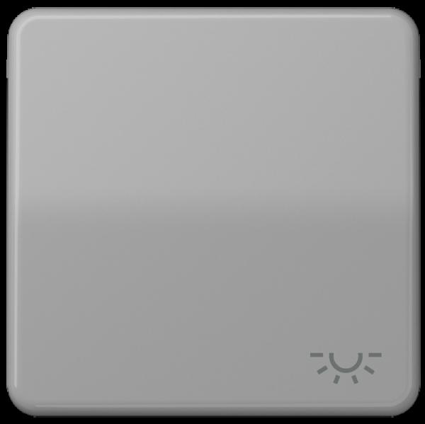 "JUNG CD590LGR Wippe mit Symbol ""Licht"" Grau"