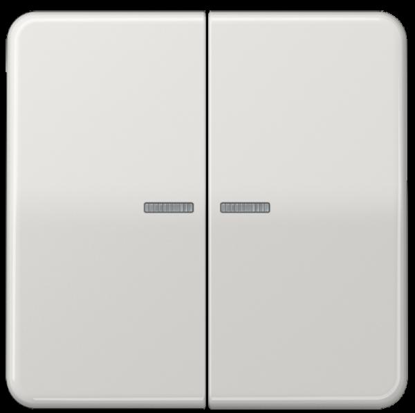 JUNG CD595KO5LG Kontroll-Serien-Wippe Lichtgrau