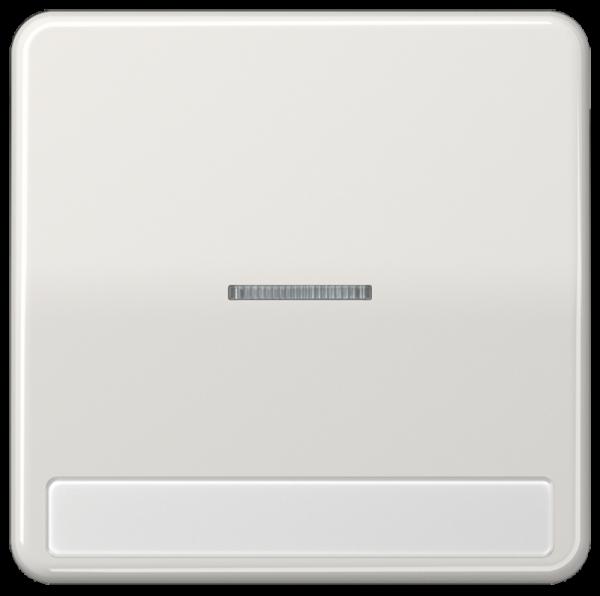 JUNG CD590NAKO5LG Kontroll-Wippe mit Schriftfeld Lichtgrau