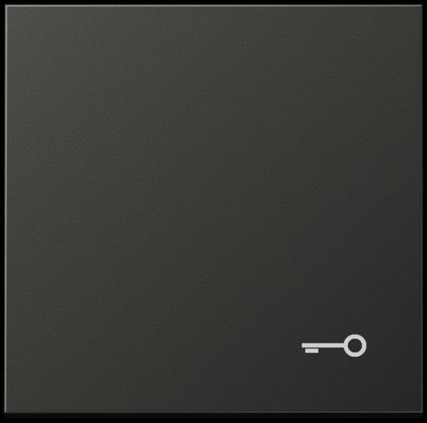 """JUNG AL2990TAN Wippe mit Symbol """"Tür"""" Anthrazit"""
