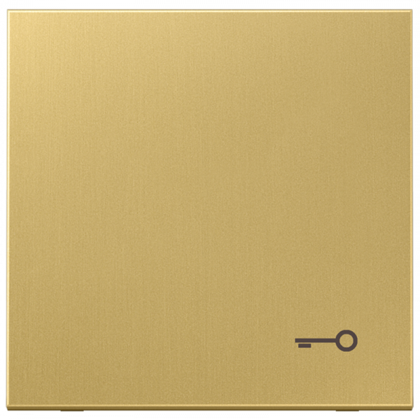 "JUNG ME2990TC Wippe mit Symbol ""Tür"" Messing-Classic"