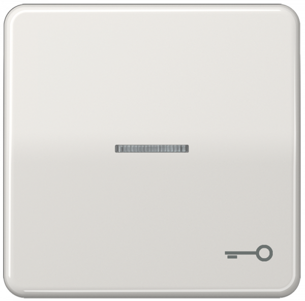 """JUNG CD590KO5TLG Kontroll-Wippe mit Symbol """"Schlüssel"""" Lichtgrau"""