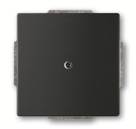 schwarz matt sonstige carat busch j ger schalter. Black Bedroom Furniture Sets. Home Design Ideas
