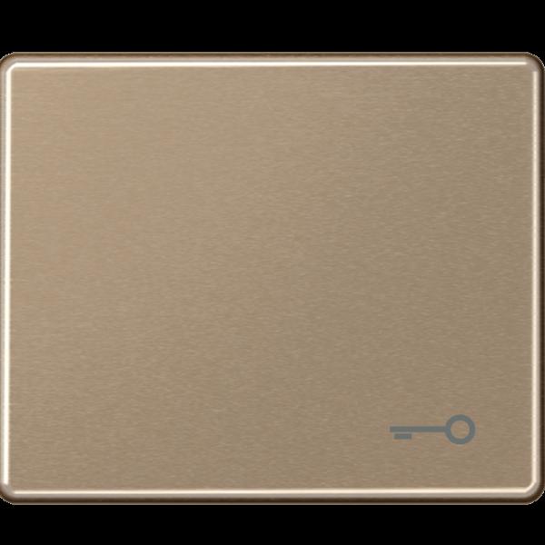 """JUNG SL590TGB Wippe mit Symbol """"Schlüssel"""" Gold-Bronze"""