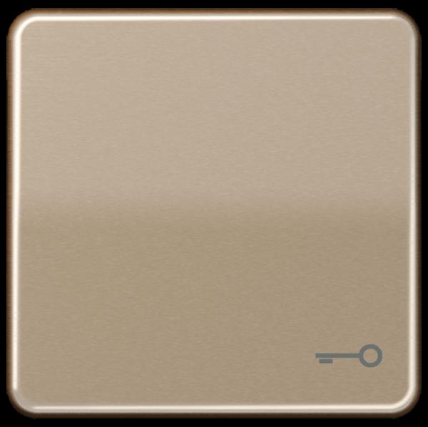 "JUNG CD590TGB Wippe mit Symbol ""Tür"" Gold-Bronze"