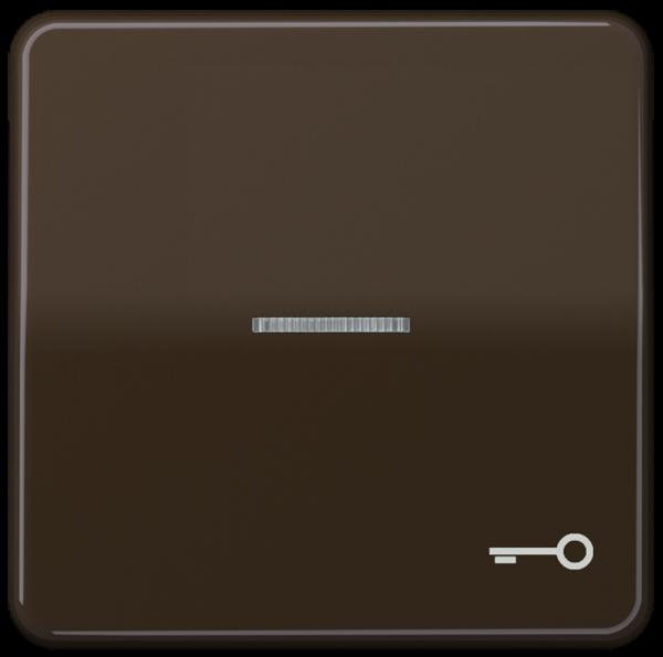 """JUNG CD590KO5TBR Kontroll-Wippe mit Symbol """"Schlüssel"""" Braun"""