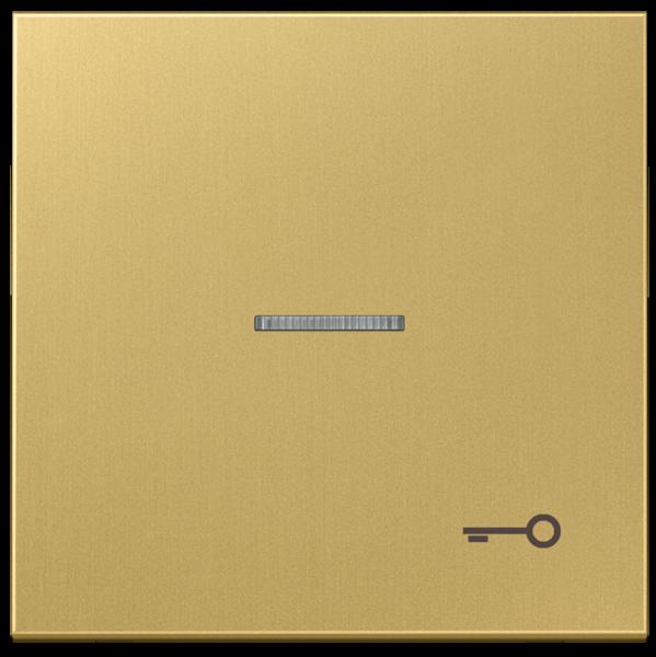 """JUNG ME2990KO5TC Kontroll-Wippe mit Symbol """"Tür"""" Messing-Classic"""