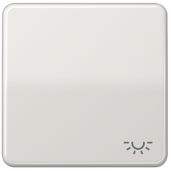 """JUNG CD590LLG Wippe mit Symbol """"Licht"""" Lichtgrau"""