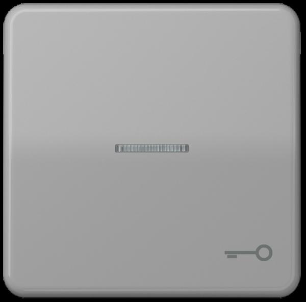 "JUNG CD590KO5TGR Kontroll-Wippe mit Symbol ""Schlüssel"" Grau"