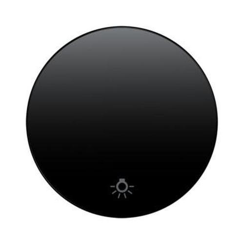 Berker 16202035 Wippe mit Aufdruck Symbol Licht R.1/R.3 Schwarz, Glänzend