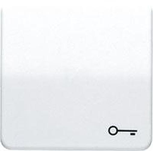"""JUNG CD590TGR Wippe mit Symbol """"Schlüssel"""" Grau"""