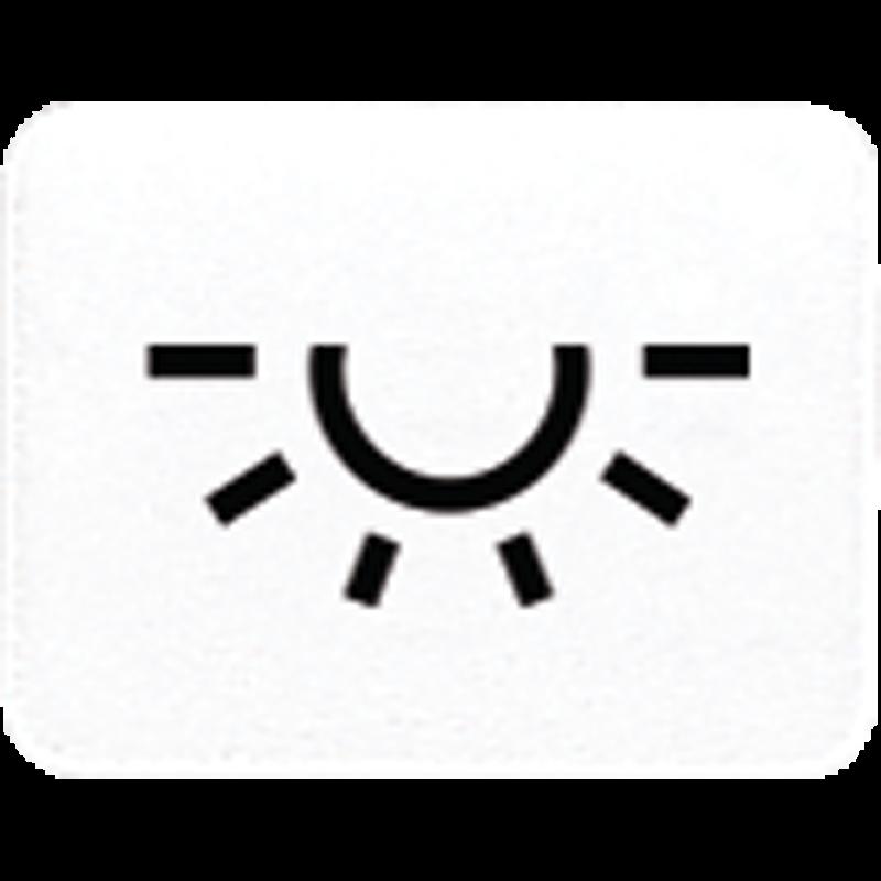 Jung Taster-Symbol Licht | Steckdosen24