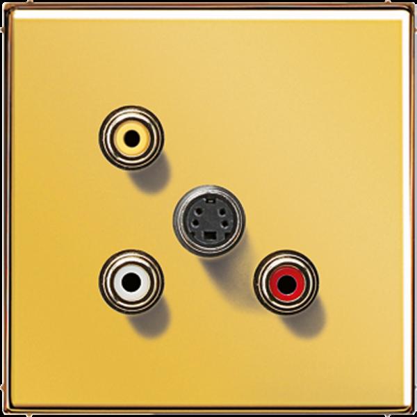 JUNG MAGO1051 Cinch Audio-Composite Video-S-Video Goldfarben